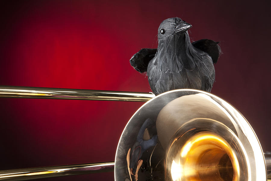 Crow And Trombone On Red Photograph  - Crow And Trombone On Red Fine Art Print