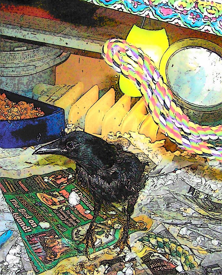 Crow Mixed Media - Crow In Rehab by YoMamaBird Rhonda