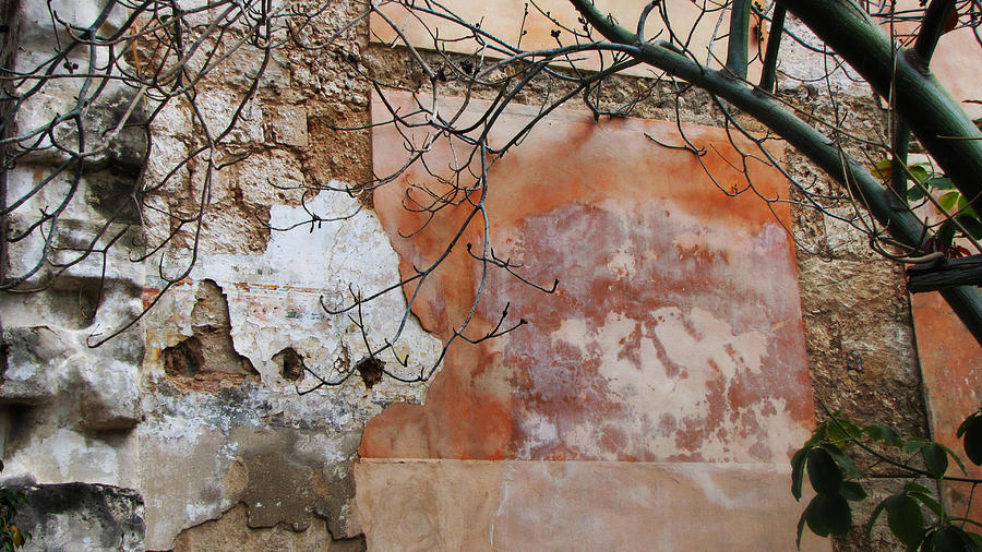 Crumbling Wall Photograph