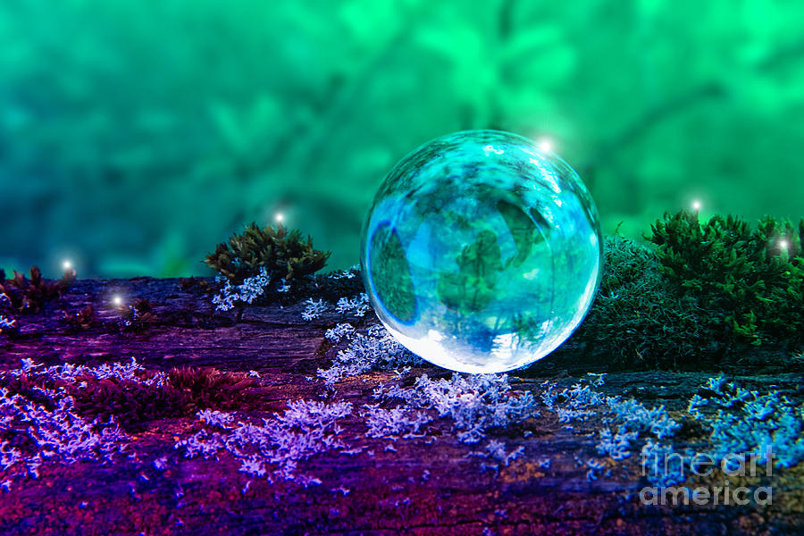 Crystal Ball - Magical Photograph  - Crystal Ball - Magical Fine Art Print