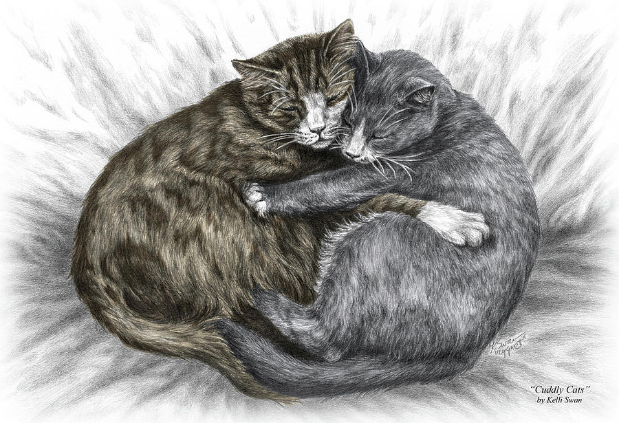 Cuddly Cats - Color Tinted Art Print Drawing