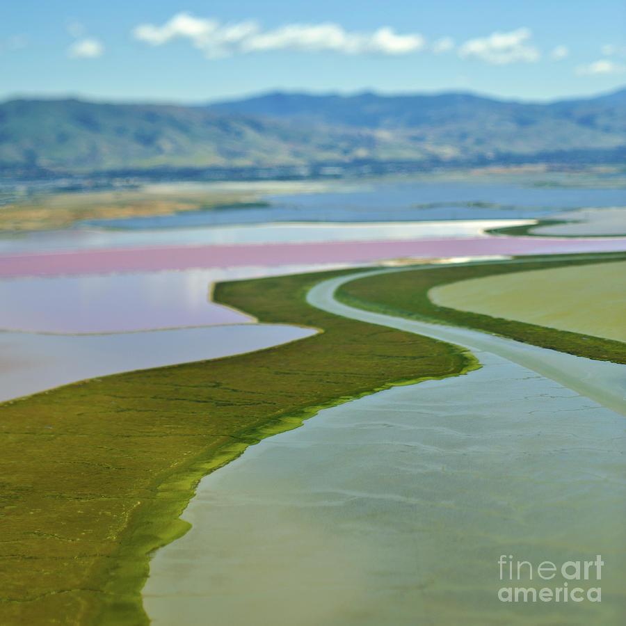 Cultivated Floodplains Photograph by Eddy Joaquim