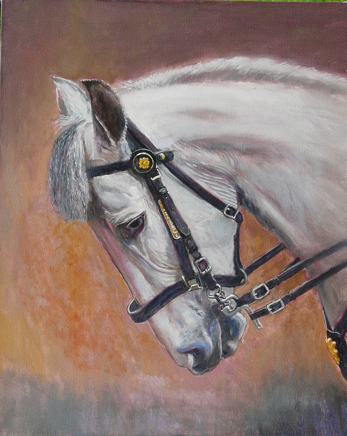 Irish Draught Painting - Cumhaill by Tomas OMaoldomhnaigh