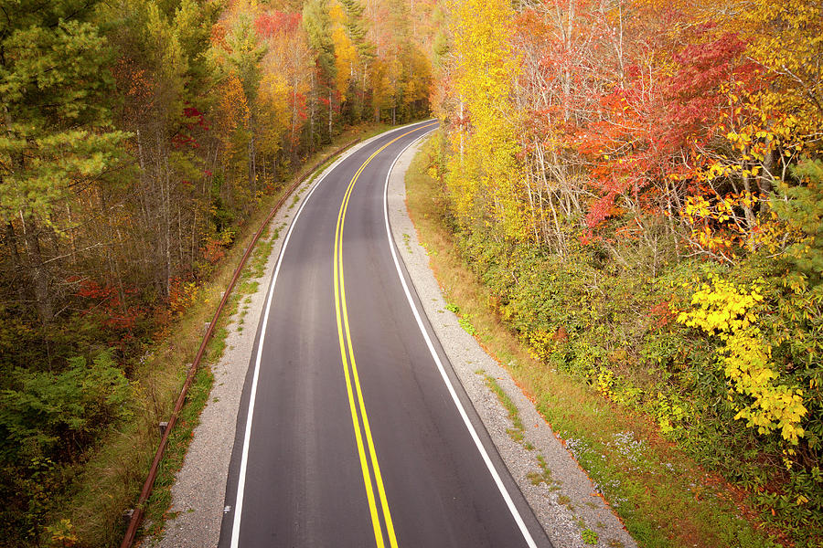 Curvy Road Blue Ridge Parkway, North Carolina Photograph  - Curvy Road Blue Ridge Parkway, North Carolina Fine Art Print