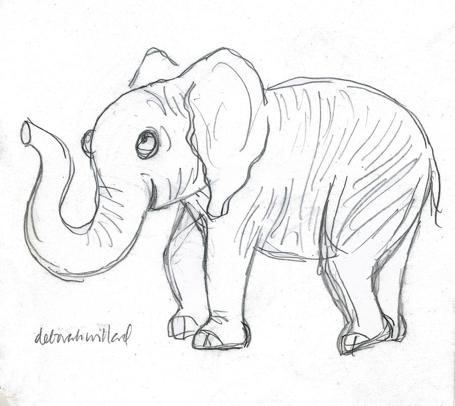 Cute elephant drawing