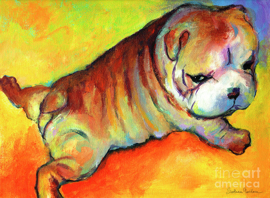Cute English Bulldog Puppy Dog Painting by Svetlana Novikova