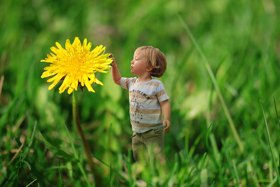 Cute Tiny Boy Playing In The Grass Photograph  - Cute Tiny Boy Playing In The Grass Fine Art Print