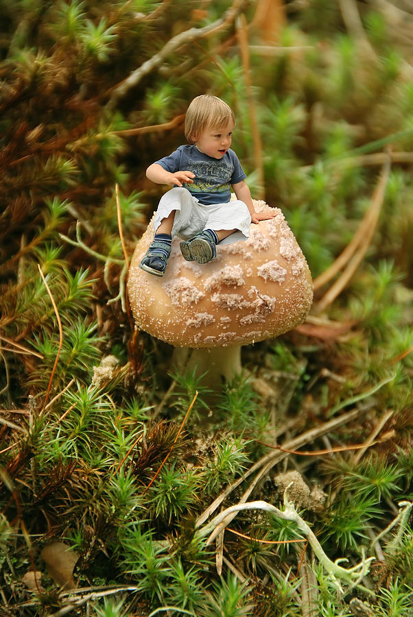 Cute Tiny Boy Sitting On A Mushroom Photograph  - Cute Tiny Boy Sitting On A Mushroom Fine Art Print