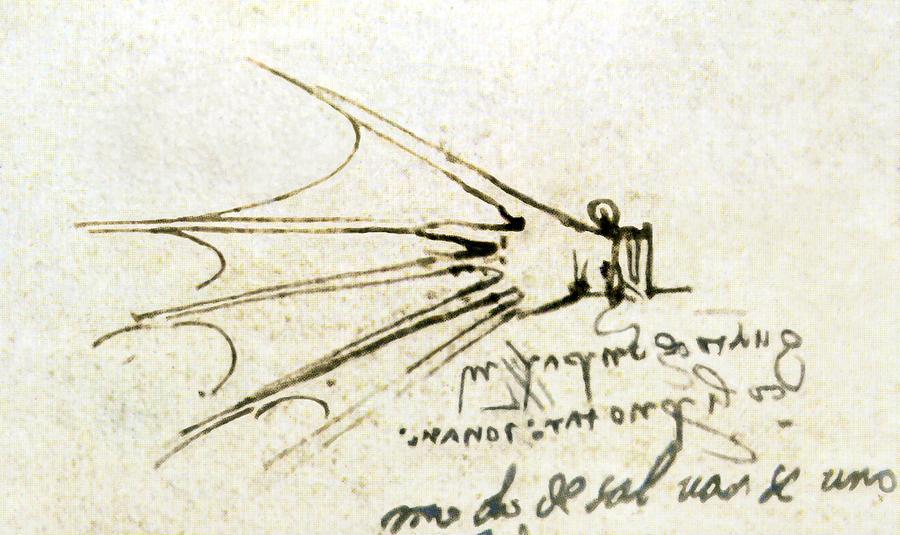 Da Vincis Webbed Glove For Swimming Photograph