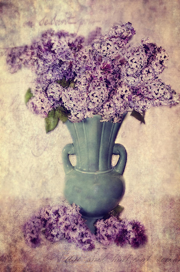 Lilacs Photograph - Daddys Lilacs Series Vi by Kathy Jennings