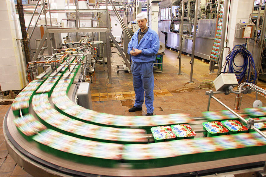 Food Photograph - Dairy Factory Production Line by Ria Novosti