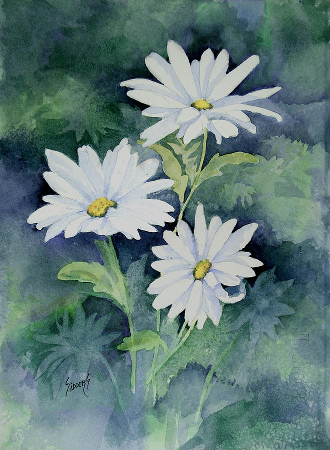 Daisy Painting - Daisies II by Sam Sidders