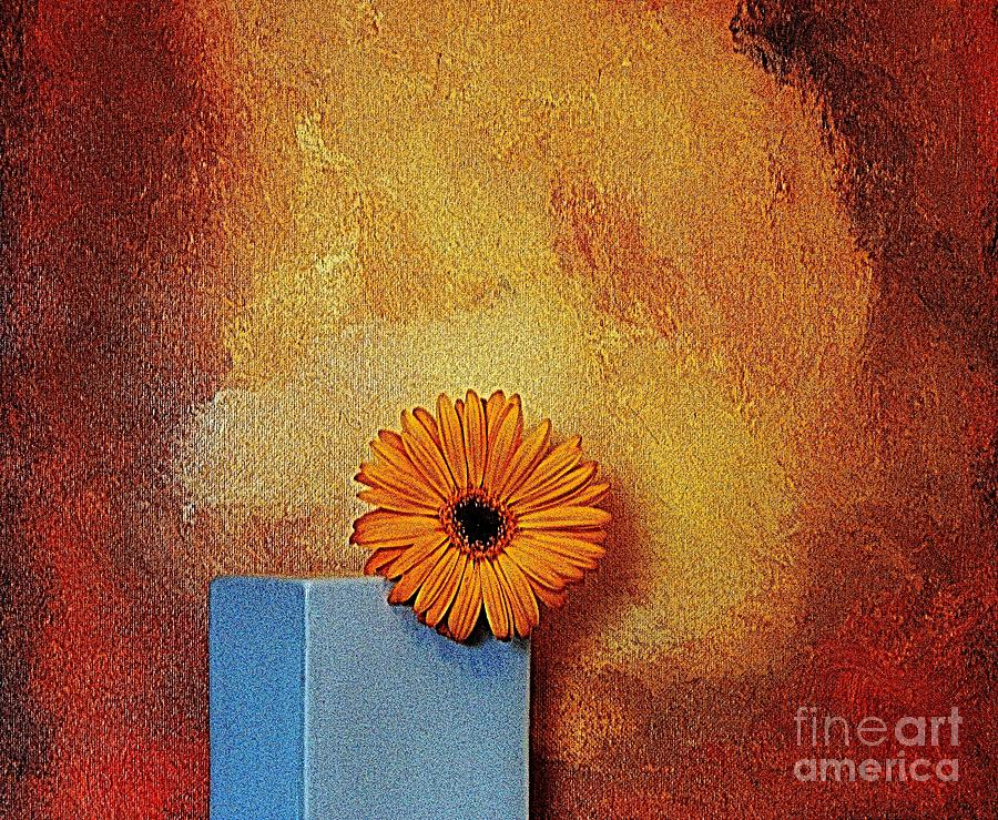 Daisy Burn Photograph  - Daisy Burn Fine Art Print