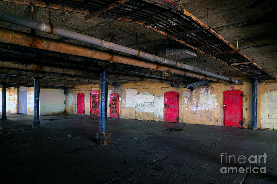 Damp Basement Area Photograph  - Damp Basement Area Fine Art Print