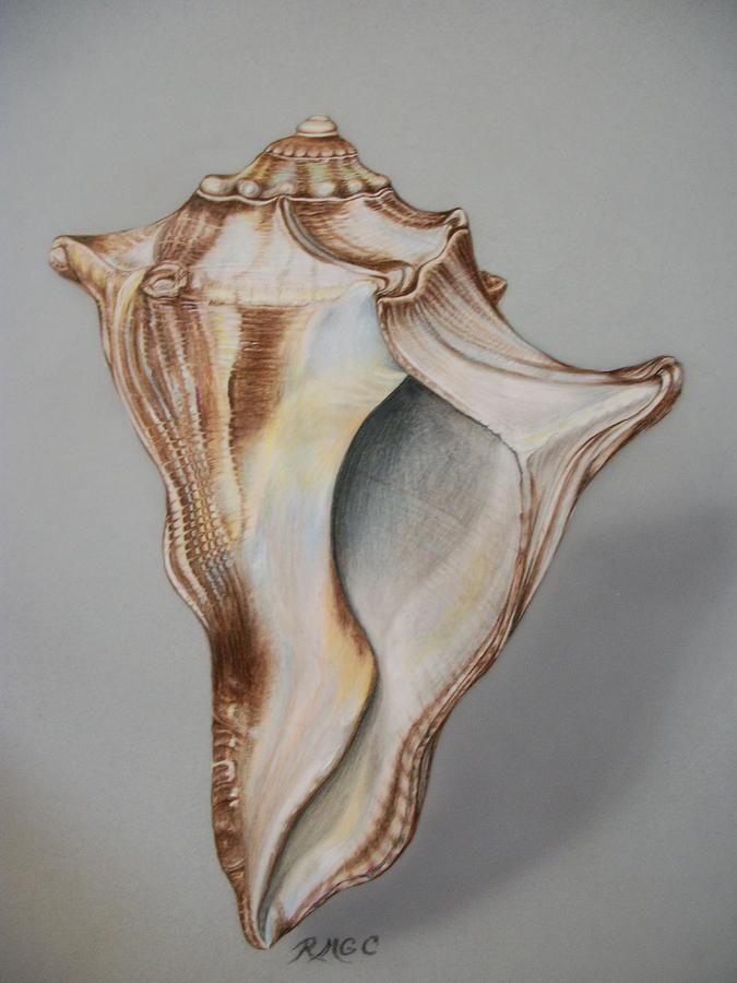 Dancing Conch Drawing  - Dancing Conch Fine Art Print