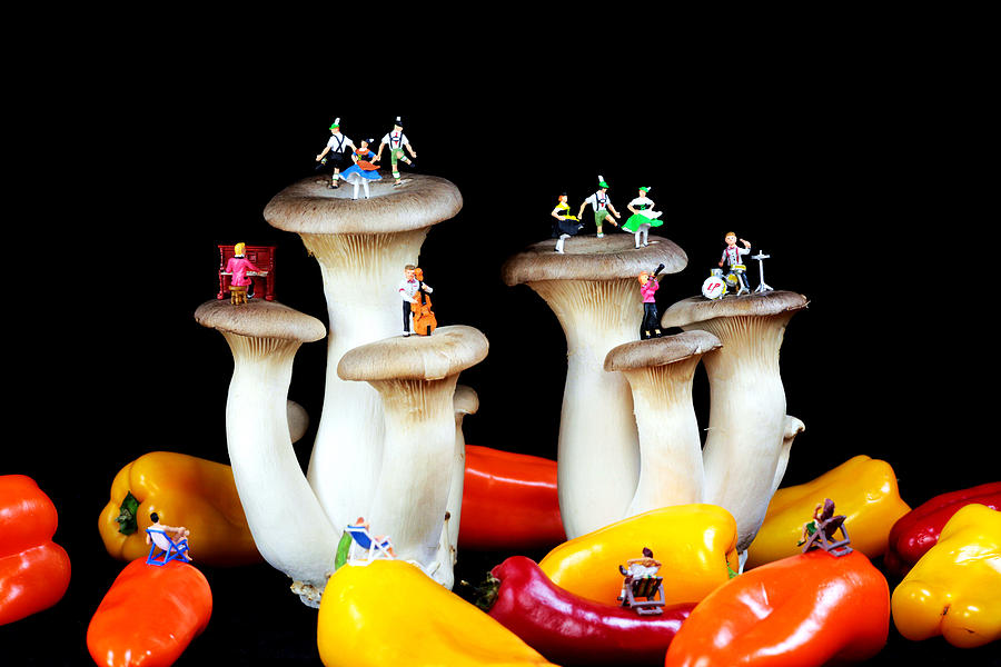 Dancing Show On Mushroom Photograph  - Dancing Show On Mushroom Fine Art Print