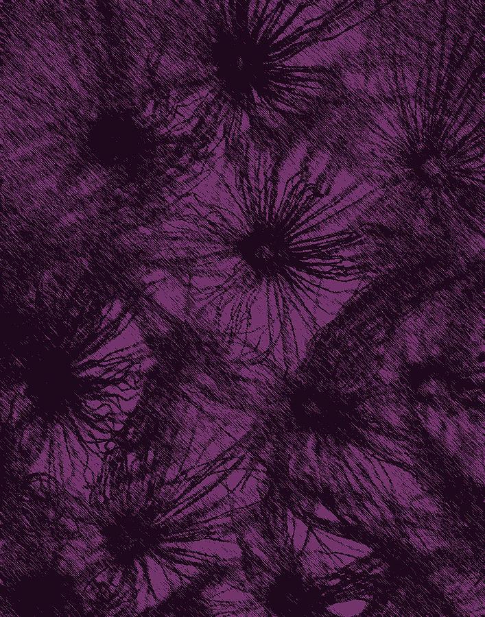 Dandelion Abstract Digital Art