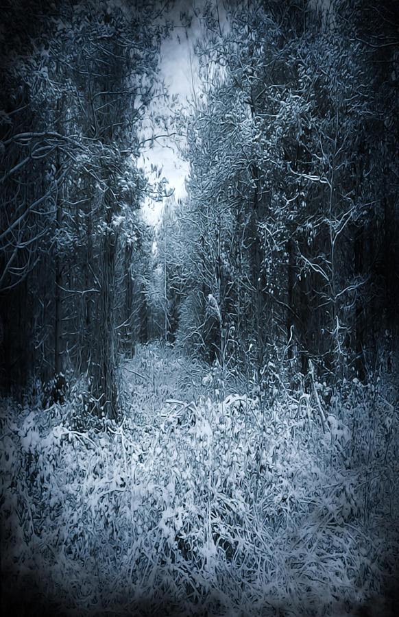 Dark Place Photograph  - Dark Place Fine Art Print