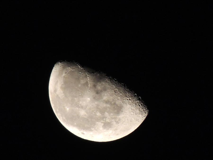 Dark Side Of October Moon Pyrography