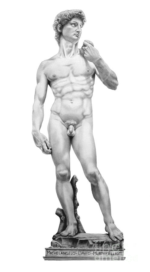 David-michelangelo Drawing  - David-michelangelo Fine Art Print