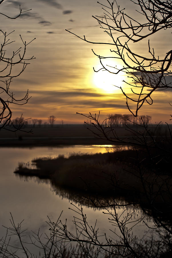 Dawn At Bombay Hook Photograph  - Dawn At Bombay Hook Fine Art Print