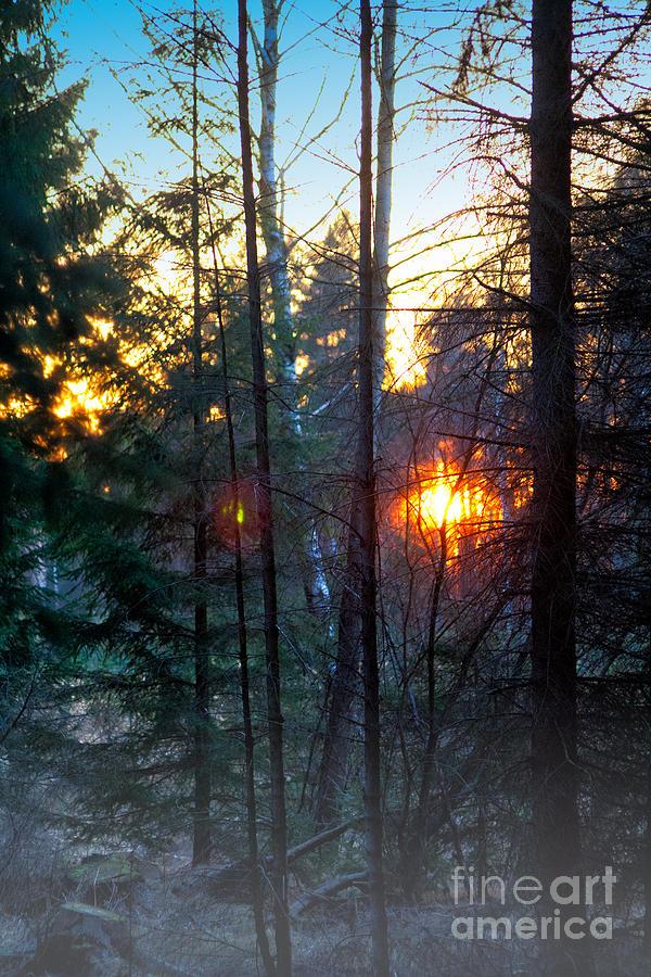 Dawn Photograph