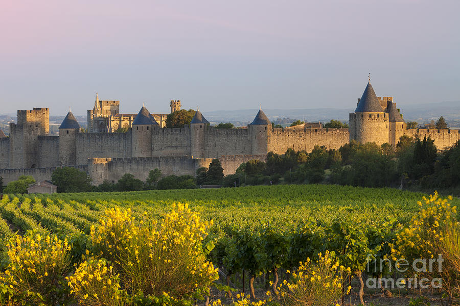 Dawn In Carcassonne Photograph