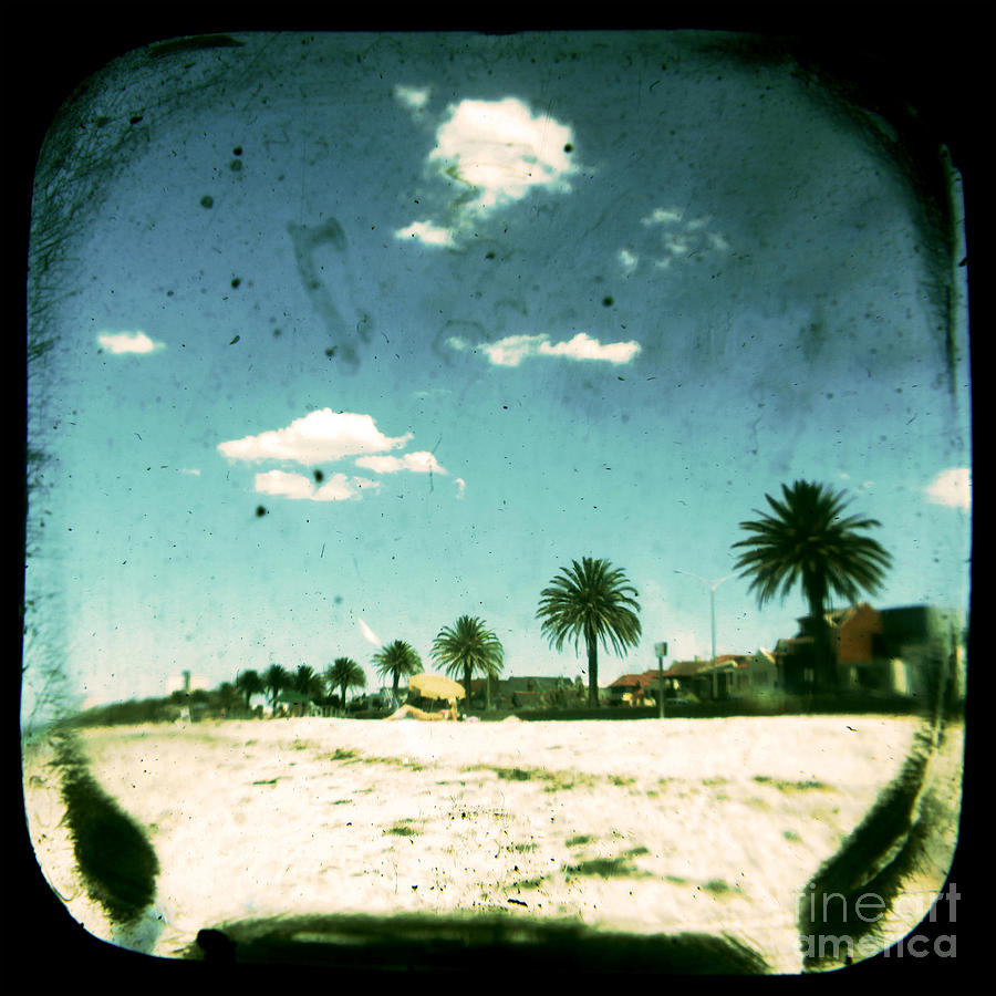 Daydream Photograph