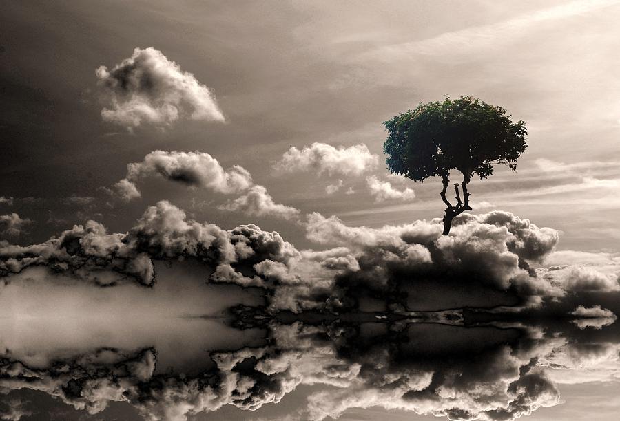Daydream Digital Art