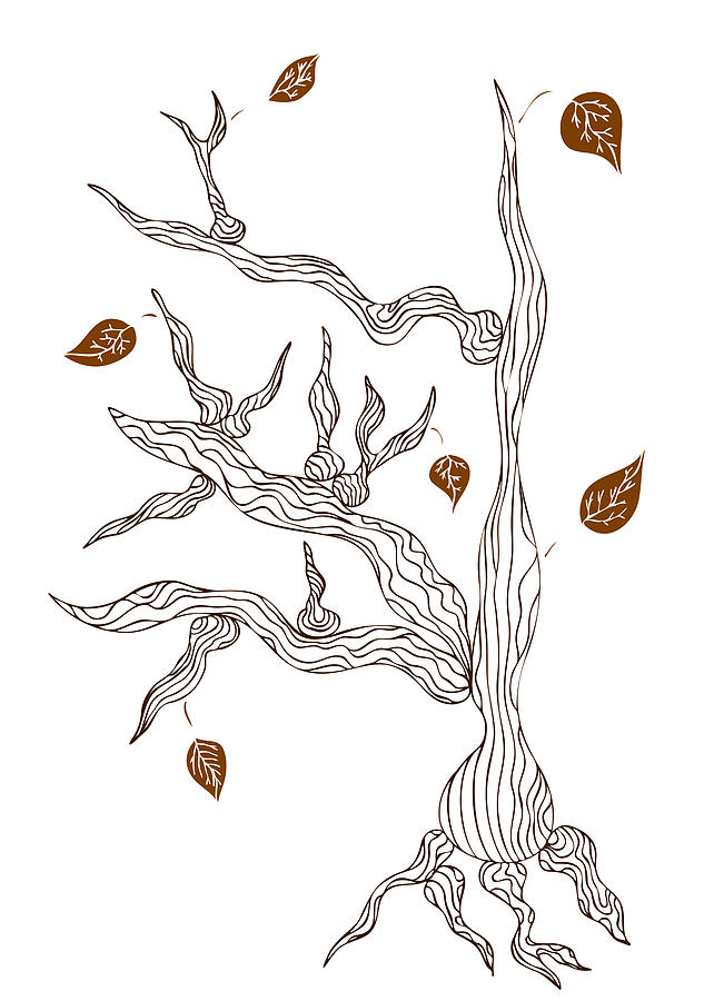 Dead Wood Drawing  - Dead Wood Fine Art Print