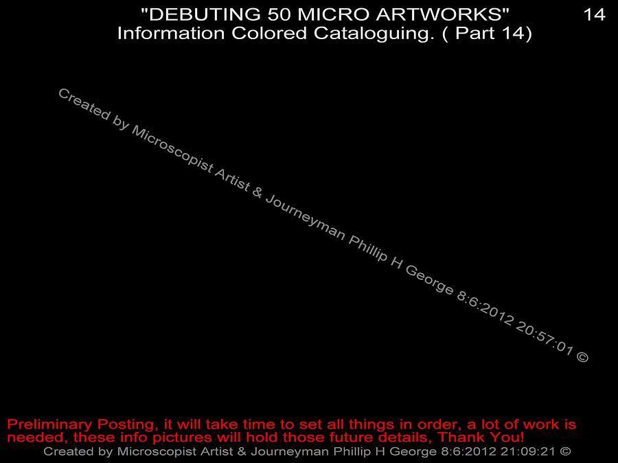 Nanomicroinfinity Art Digital Art - Debuting 50 Micro Artworks Part 14 by Phillip H George