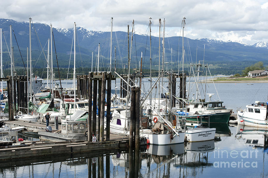 Deep Bay Harbor Photograph