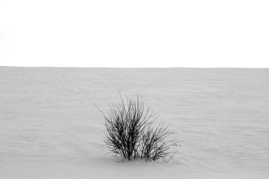 Deep Breath Photograph