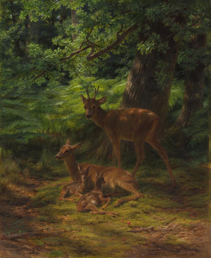 Deer In Repose Painting