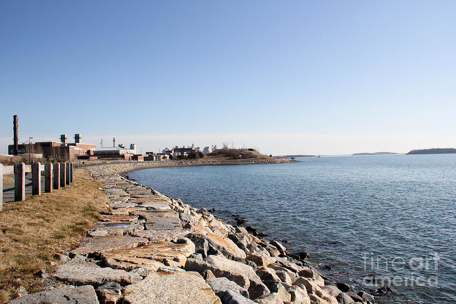 Deer Island Trail Photograph