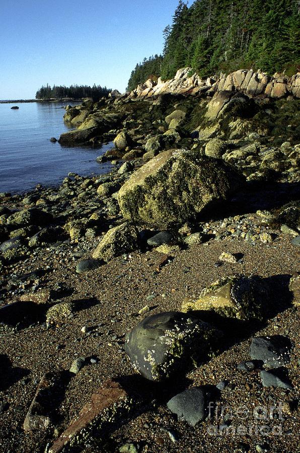 Deer Isle And Barred Island Photograph