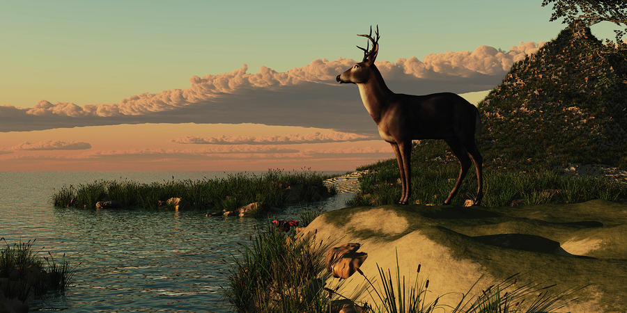 Deer Lake Painting  - Deer Lake Fine Art Print