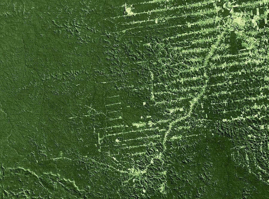 Rondonia Photograph - Deforestation In Rondonia, Brazil, 1992 by Nasa