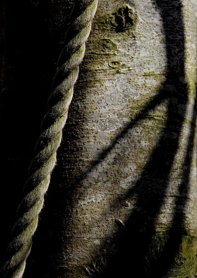 Rope Photograph - Deliverance by Odd Jeppesen