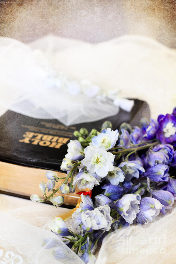 Delphiniums And Bible Photograph