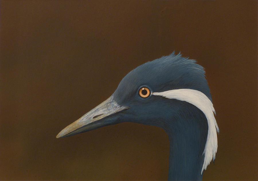 Demoiselle Crane Painting