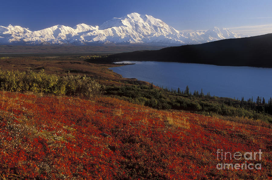Denali Evening Photograph