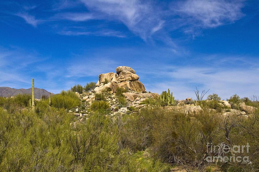Desert Boulders Photograph