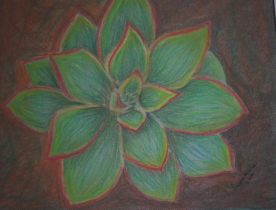 Desert Flower Pastel