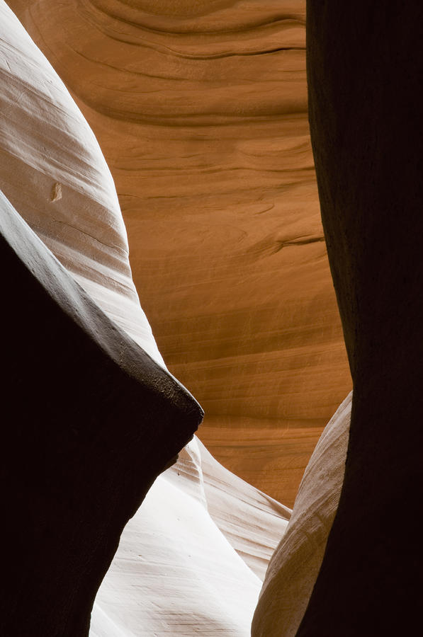 Desert Sandstone Abstract Photograph  - Desert Sandstone Abstract Fine Art Print