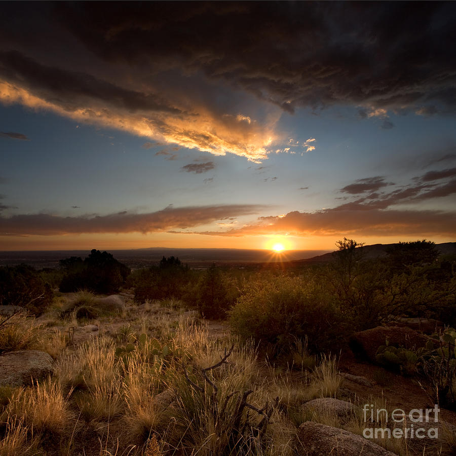 Desert Sunset Photograph  - Desert Sunset Fine Art Print