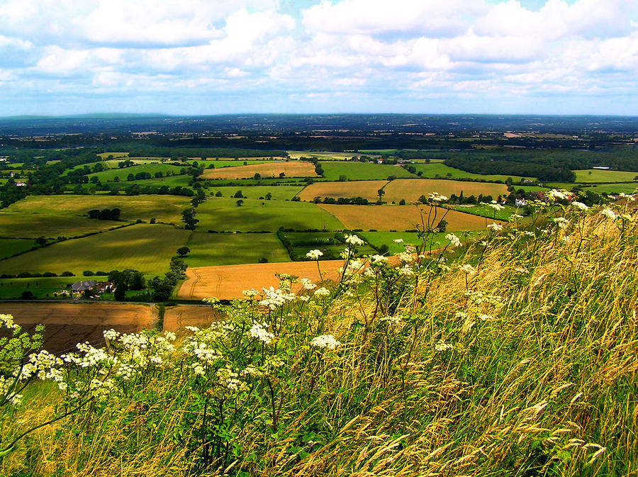Devils Dyke In Somerset England Photograph