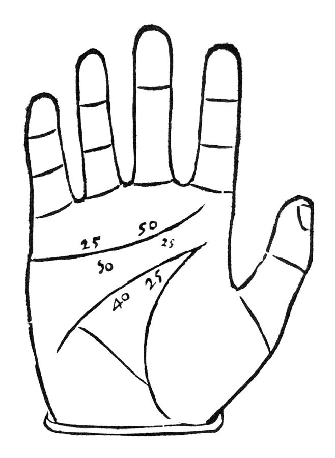 Diagram Used In Palmistry, 16th Century Photograph