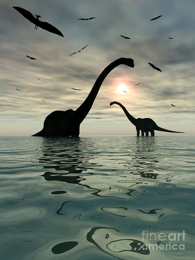 Diplodocus Dinosaurs Bathe In A Large Digital Art  - Diplodocus Dinosaurs Bathe In A Large Fine Art Print