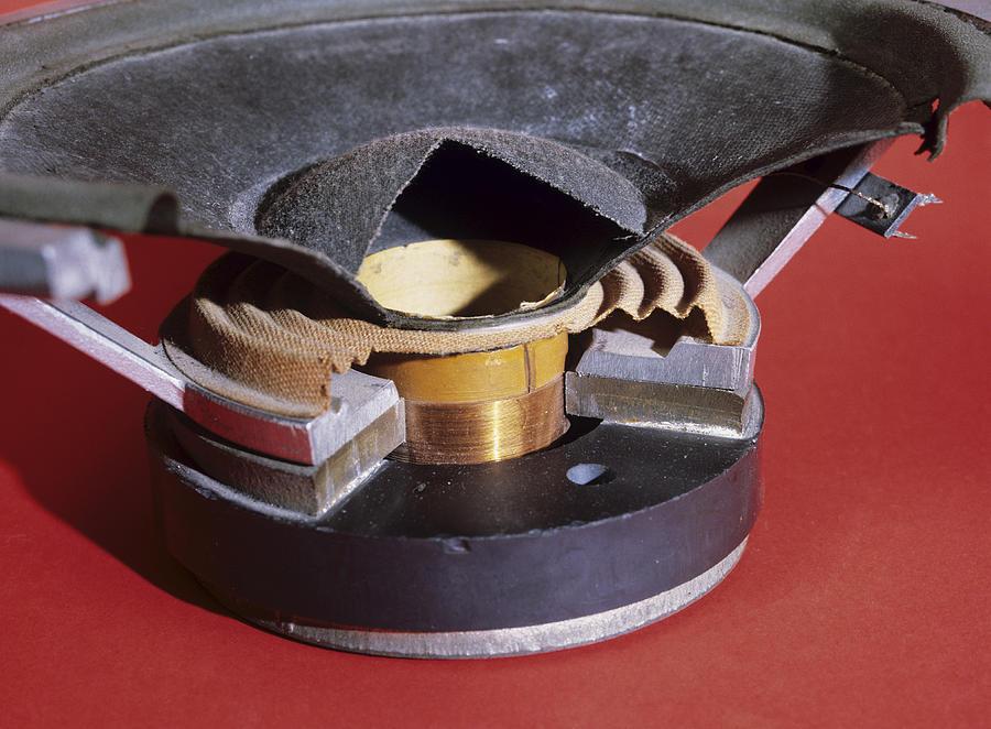 Dismantled Loudspeaker Photograph